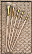 TIB's Wet Cleaning Brushes